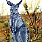 Joey the Kangaroo  by Linda Callaghan