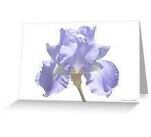 Chambray Elegance ~ This Iris Greeting Card