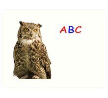 Owl ABC Art Print