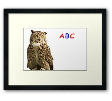 Owl ABC Framed Print