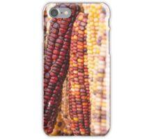 Indian Corn 5 iPhone Case/Skin
