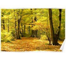 mystical autumn Poster