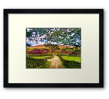Summer in Yorkshire Framed Print