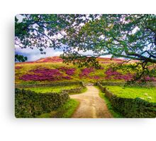 Summer in Yorkshire Canvas Print