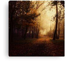 Dark path Canvas Print