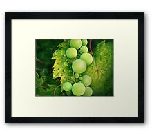 """The Grapes"" Framed Print"