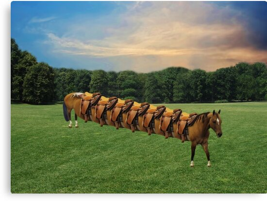 (✿◠‿◠)  HORSE LIMO RIDES SEVEN LETS RIDE LOL (✿◠‿◠) by ✿✿ Bonita ✿✿ ђєℓℓσ