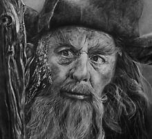 Radagast, the brown by Anniebradsw