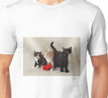 fluffy kittens Unisex T-Shirt