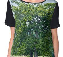 Big old oak tree on a meadow Chiffon Top