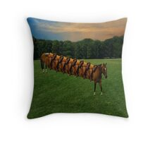 (✿◠‿◠) HORSE LIMO RIDES SEVEN LETS RIDE LOL PILLOW AND OR TOTE BAG (✿◠‿◠) Throw Pillow