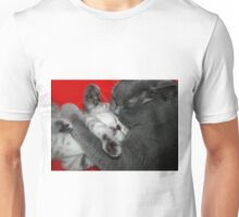 cat and kitten Unisex T-Shirt