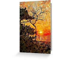 Hot Night In The Tropics Greeting Card