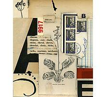 Spelling Photographic Print