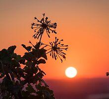 sunset in crete by milena boeva