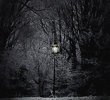 Reality of Narnia by pault55