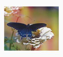 Spicebush Swallowtail Kids Tee