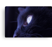 Black cat eye Canvas Print