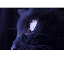 Black cat eye Photographic Print