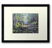 A Chance Encounter With Mossman Framed Print