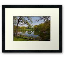 Spring in Central park, New York Framed Print