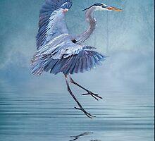 Misty Blue by Tarrby