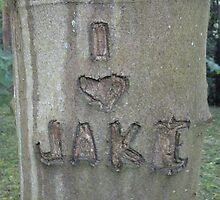 I Love Jake by Louise Parton