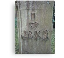 I Love Jake Canvas Print