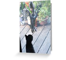 Henry and the Cat Greeting Card