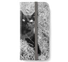 Chat noir iPhone Wallet/Case/Skin
