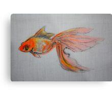 Goldfish Pond ( close up #9) Metal Print