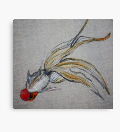 Goldfish Pond (close up #5) Canvas Print