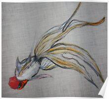 Goldfish Pond (close up #5) Poster