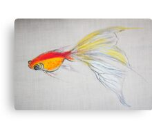 Goldfish Pond (close up #1) Metal Print