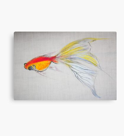 Goldfish Pond (close up #1) Canvas Print