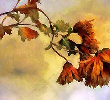 The End of the Season by RC deWinter