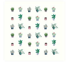 A Collection of House Plants Art Print