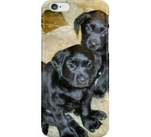 Pooped puppies iPhone Case/Skin
