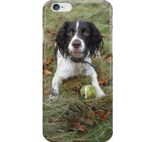 Typical Springer iPhone Case/Skin