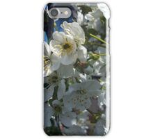 Cherry Tree Blossom iPhone Case/Skin