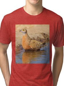 Burchell's Sand-grouse - Life Quenching Water Tri-blend T-Shirt
