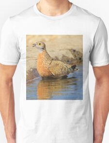 Burchell's Sand-grouse - Life Quenching Water Unisex T-Shirt