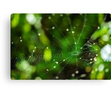 Spider web closeup with selective focus Canvas Print