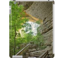 the arch beckons...  iPad Case/Skin