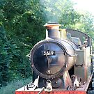Bodmin Steam Train by kalaryder