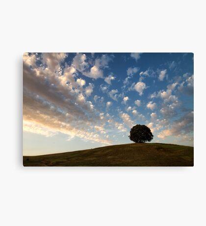 Clouds. Canvas Print