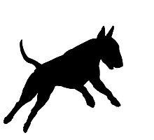 Bull Terrier (Hucklebutt!) Photographic Print