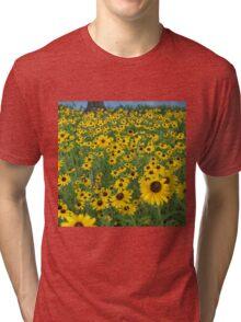 Susans in the Wind Tri-blend T-Shirt