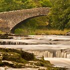 River Ribble at Stainforth by Stephen Knowles