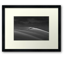 A Witness to Wind  Framed Print